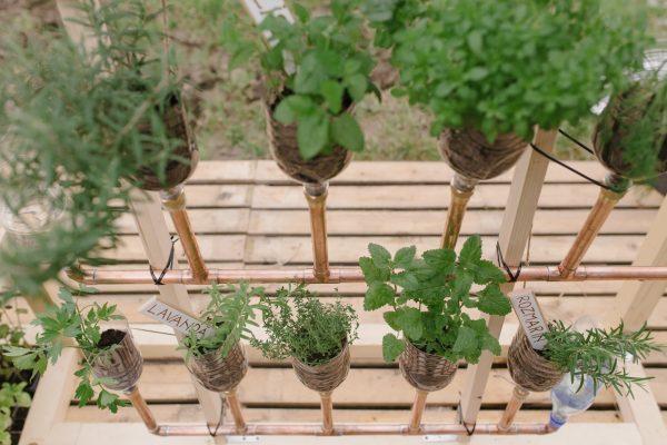 Pop-up Gardening pe Someș | Instalație