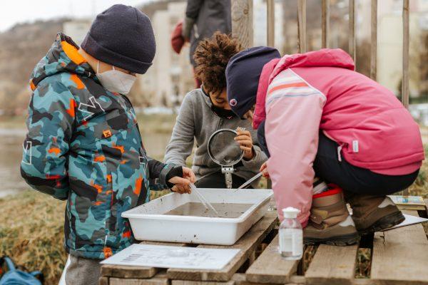 Tur hidobiologic pentru descoperirea vietăților din apă alături de Din filele naturii